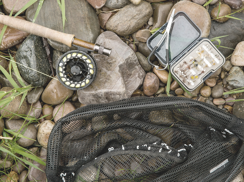 Get your gear the fish are coming!