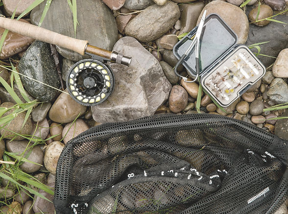 Fishing Gear & Accessories