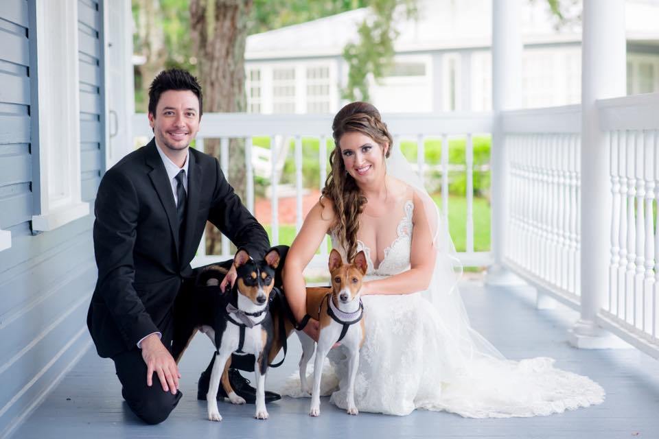 Bride and groom including their dogs in wedding ceremony