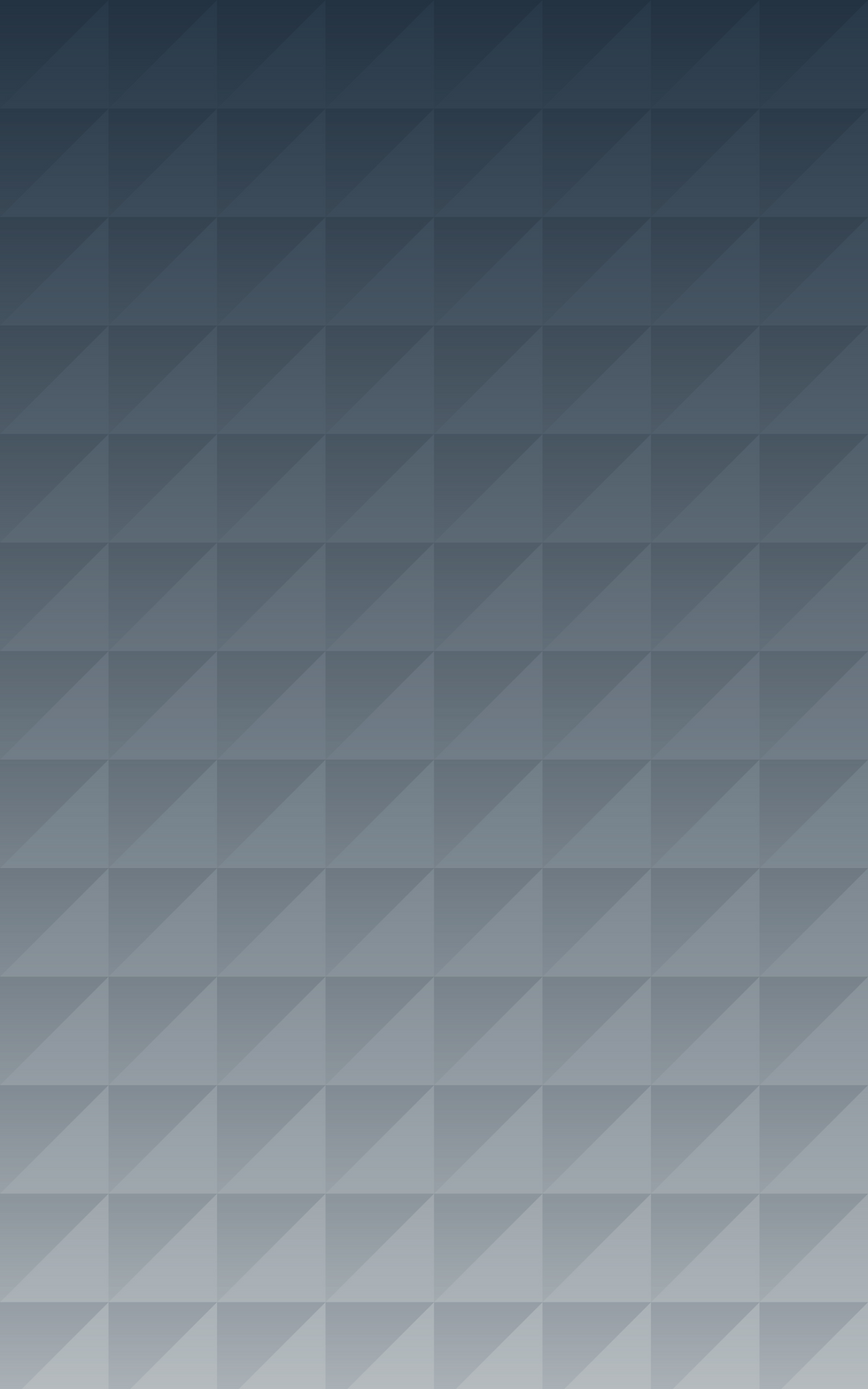 Polygon%20Pattern%20Grey_edited.png