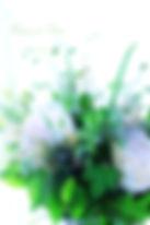 IMG_4641_Fotor.jpg