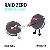 raid art 2.jpg
