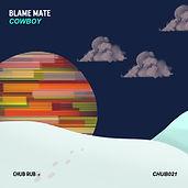 BLAME MATE ART.jpg