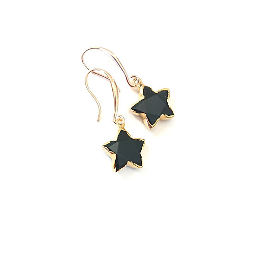 Star Onyx Design Hook Earrings