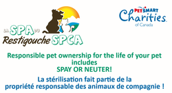 RCA SPCA and PETSMART BANNER