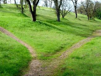 Be A Conscious Choice-maker