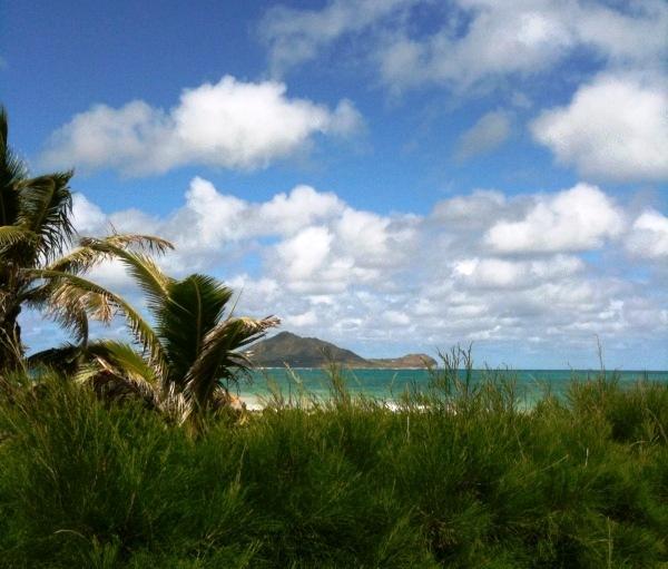 kailua beach 2.jpg