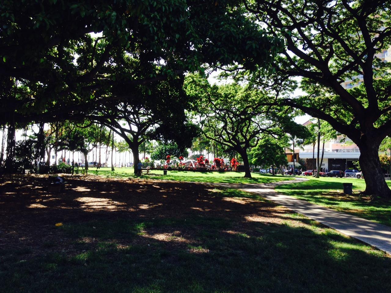 Kapiolani Park, Waikiki