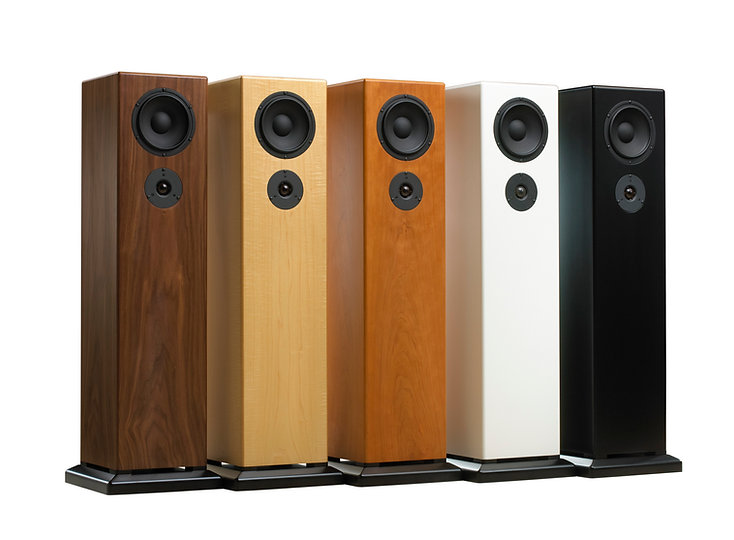 LS21 Two-way Floor Standing Speaker