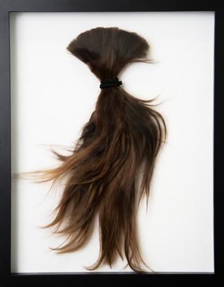 Hair of Artist