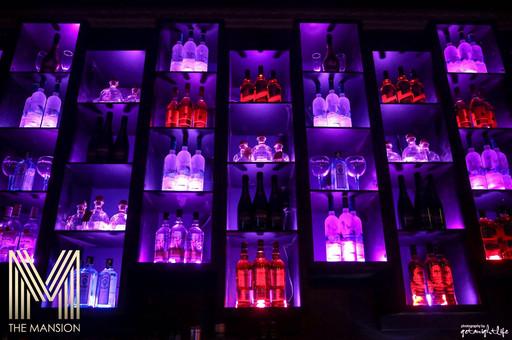 The Mansion - Bottleshelves.jpg