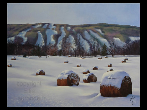 Hay Bales Ellie Lagrandeur Canvas With 2 inch gallery wrap black border