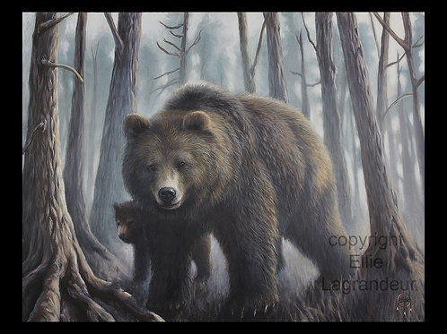 Bear by Ellie Lagrandeur  Canvas With 2 inch gallery wrap black border