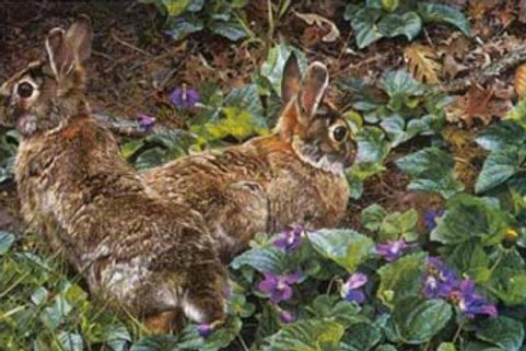Violet Trails and Cottontails - Lithograph By Carl Brenders
