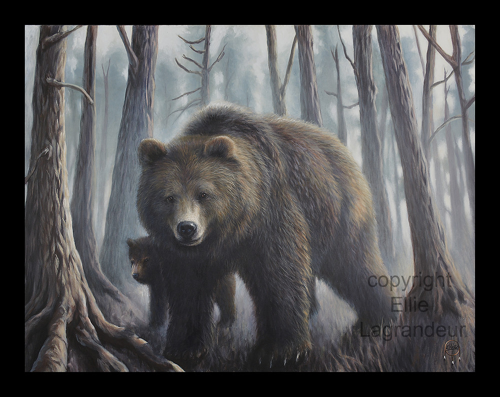 Limited Edition Wildlife Canvas Print Edmonton