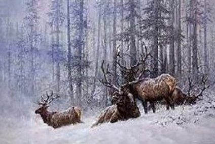 Mountain Majesty - Bull Elk- Lithograph By Larry Fanning