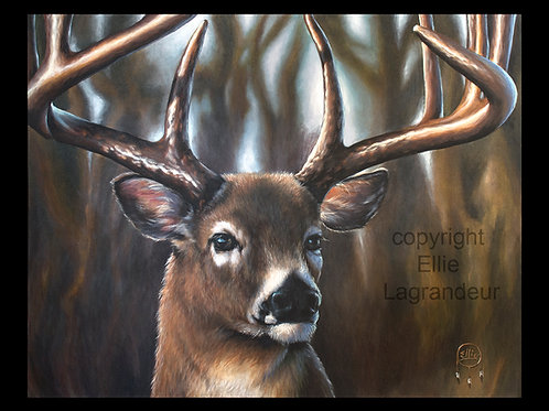 Deer by Ellie Lagrandeur  Canvas With 2 inch gallery wrap black border
