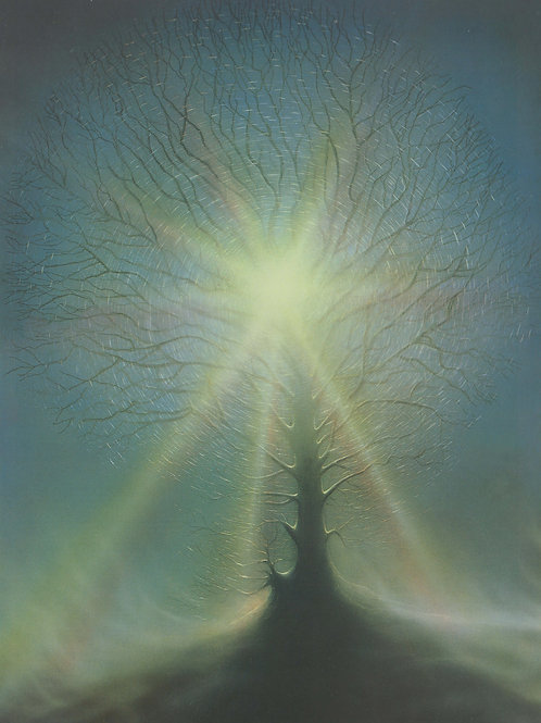 Tree of light Fine Art Print