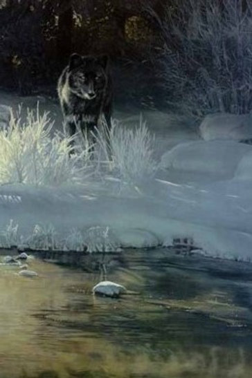Black Magic - Lithograph By Terry Isaac