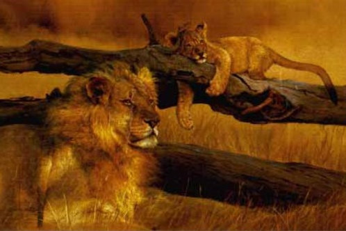 The Waiting Game - Lion and Cub - Paper By Dino Paravano