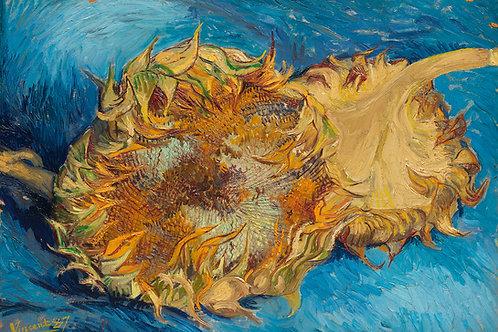Sunflowers (1887) by Vincent Van Gogh Fine Art Print