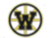 Laker Pinwheel Logo2.png