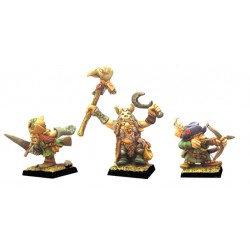 Figurines Fenryll Gnomes des Forêts II