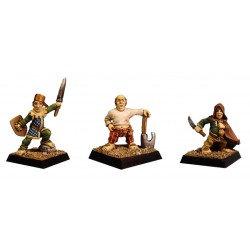 Figurines Fenryll Les hobbits