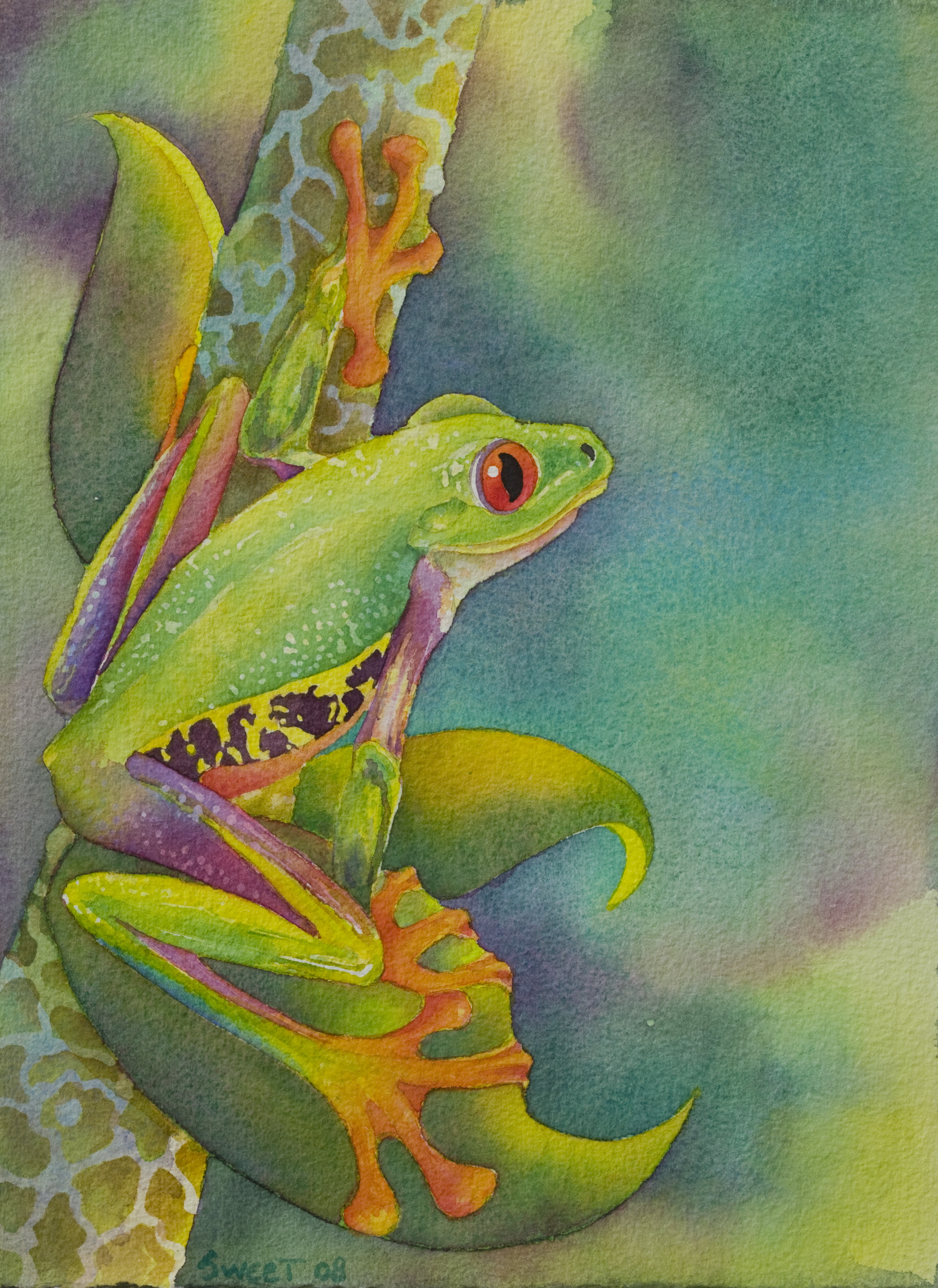 """Forest Frog 11"""" x 15 SOLD"""
