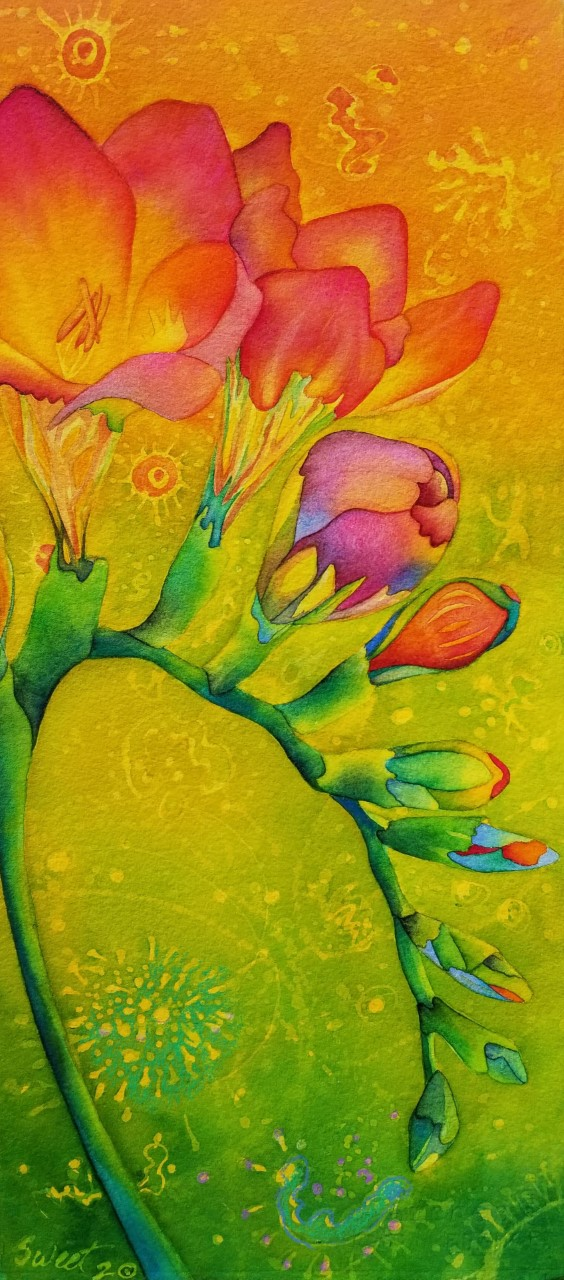 """Freesia in the Time of Covid II ~  Watercolor and pencil ~10"""" x 22"""" ~ 395.00"""