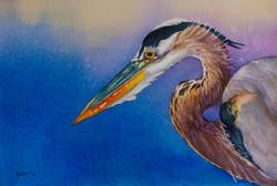 Blue Heron II 15x17 SOLD