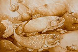 """Trout 9 x 13"""" 2011 ~ 250.00"""