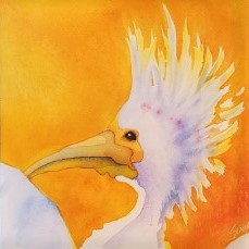 """Crane in Yellow ~ Watercolor and pencil ~ 8"""" X 8"""" - 50.00"""