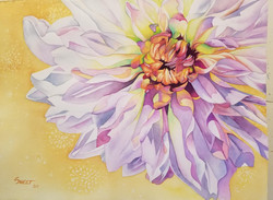 """Dahlia in the Time of Covid  ~ Watercolor ~ 22"""" x 30"""" ~ 1200. - SOLD"""