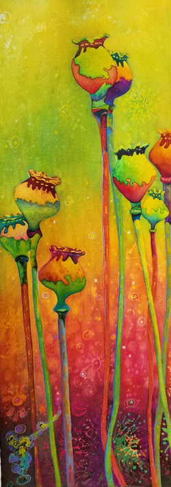 """Poppy Pods II in the Time of Covid ~ Watercolor~ 11"""" x 34"""" ~ 950. - Framed"""