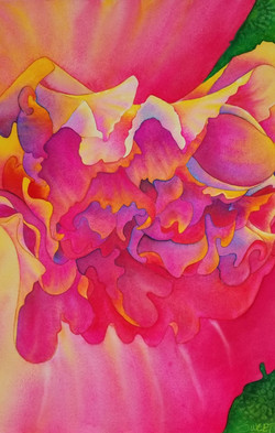 """Begonia in the Time of Covid       15x23""""    850.00 unframed"""