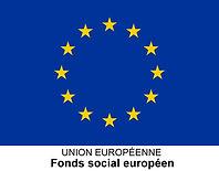 logo_fse_3.jpg