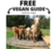 free%20vegan%20guide_edited.jpg
