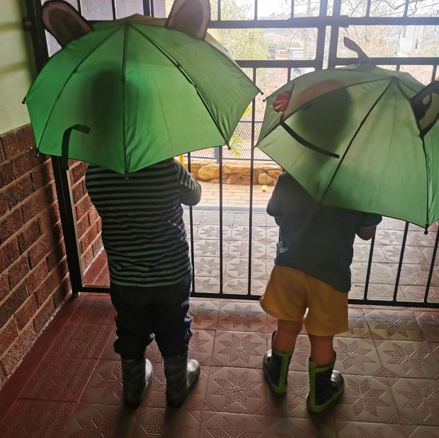 First summer rain