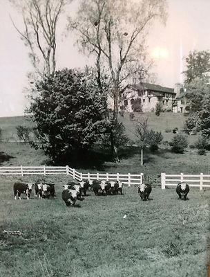 Farmhouse and Pasture