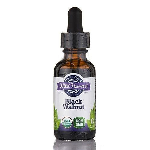 Black Walnut Extract 1 fl oz