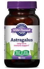 Astragalus 90 capsules