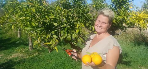 Maybritte - verse sinaasappels