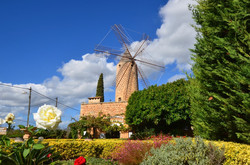 Windmill in Santa Maria