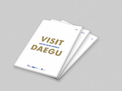 VISIT DAEGU_1