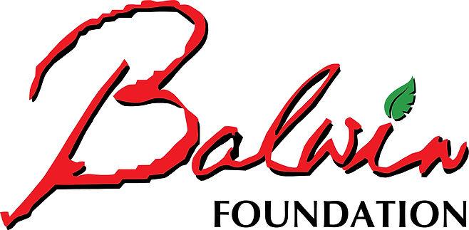 BALWIN FOUNDATION.JPG