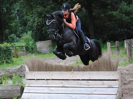 Focus op Spierkracht in het Paard