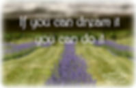 Orchard View  Lavender Farm, Port Murray, NJ, Warren County