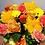 Thumbnail: F4122-祝アレンジメント オレンジ系-ひまわり・ガーベラ・バラ・カーネ・ヘピリカム 01