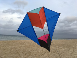 Conyne kite